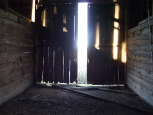 Sunlight streaming through barn door