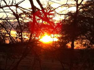 sunrise-118