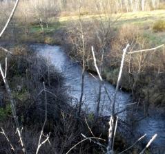 river in mi4