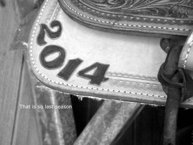 saddle (2)